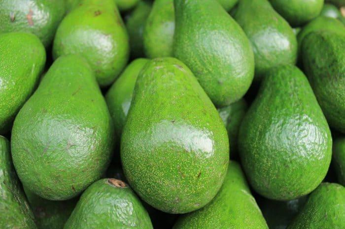 Sorvete cremoso de abacate